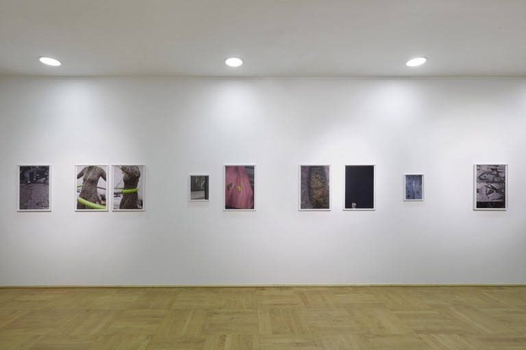 Paul Hutchinson exhibitions